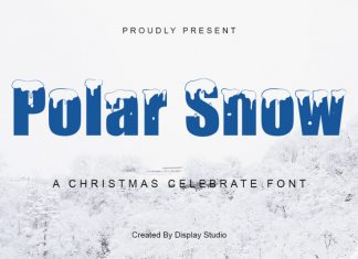 Polar Snow Display Font