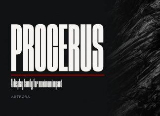 Procerus Display Font