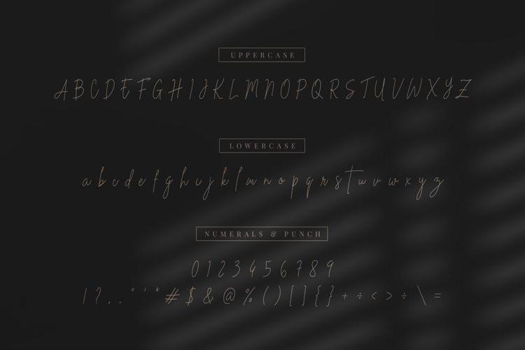 Stev Luts Handwritten Font