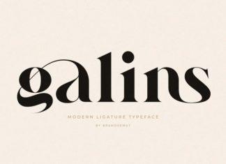 Galins Serif Font