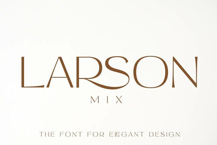 Larson Mix Sans Serif Font