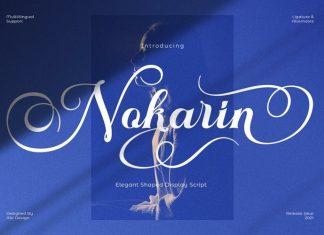 Nokarin Calligraphy Font